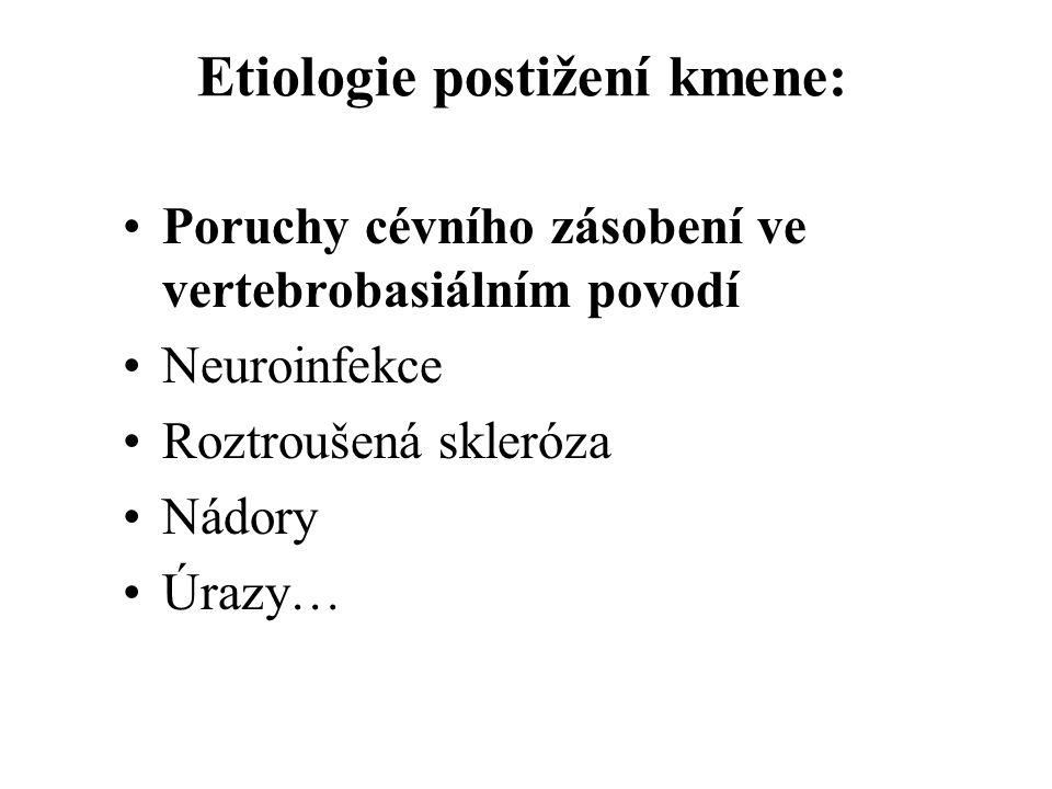 Etiologie postižení kmene: