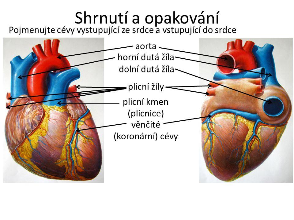 Shrnutí a opakování Pojmenujte cévy vystupující ze srdce a vstupující do srdce. aorta. horní dutá žíla.
