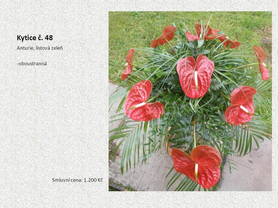 Kytice č. 48 Anturie, listová zeleň oboustranná Smluvní cena: 1.200 Kč