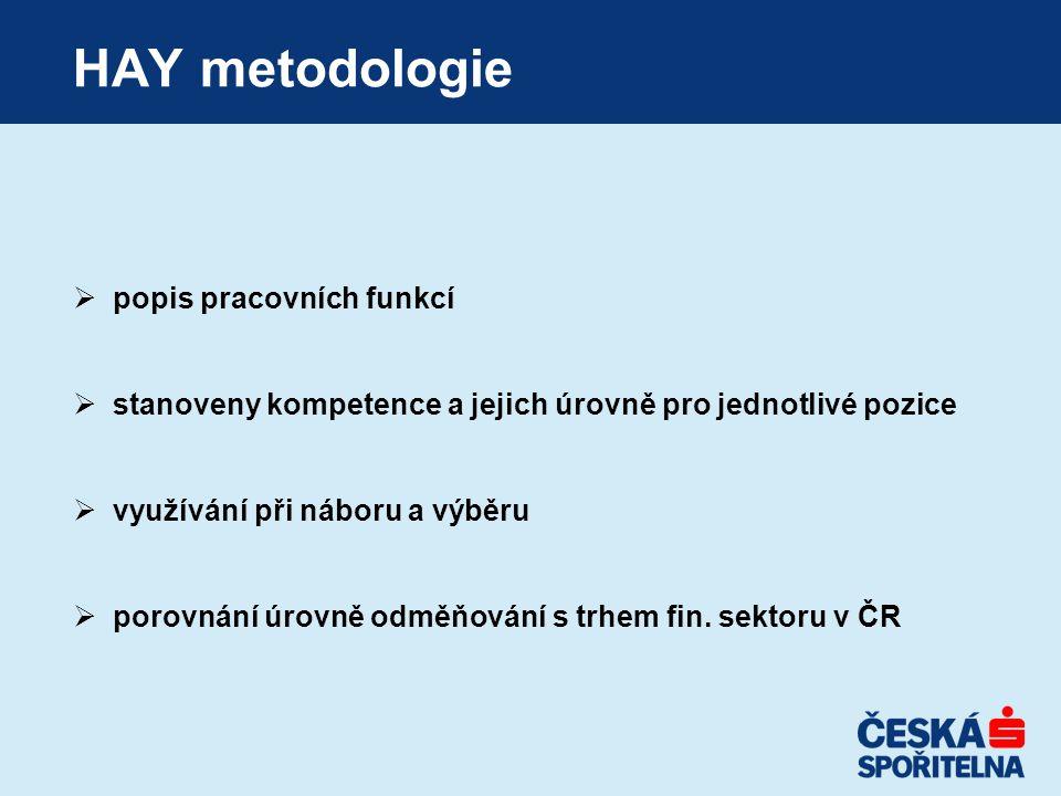 HAY metodologie popis pracovních funkcí