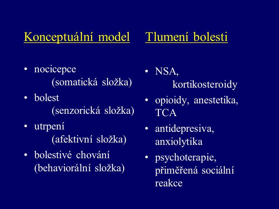 Konceptuální model Tlumení bolesti