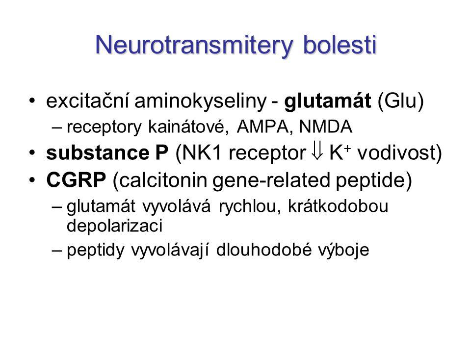 Neurotransmitery bolesti