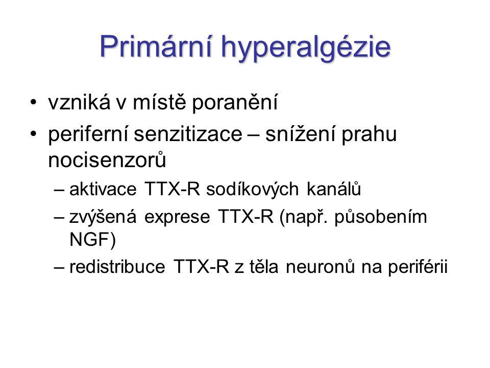 Primární hyperalgézie