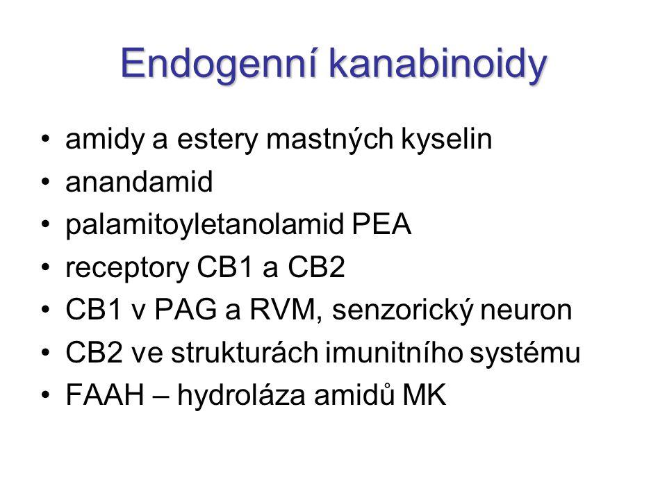 Endogenní kanabinoidy