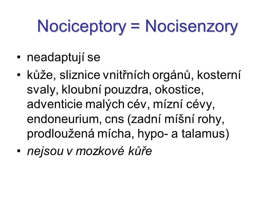 Nociceptory = Nocisenzory