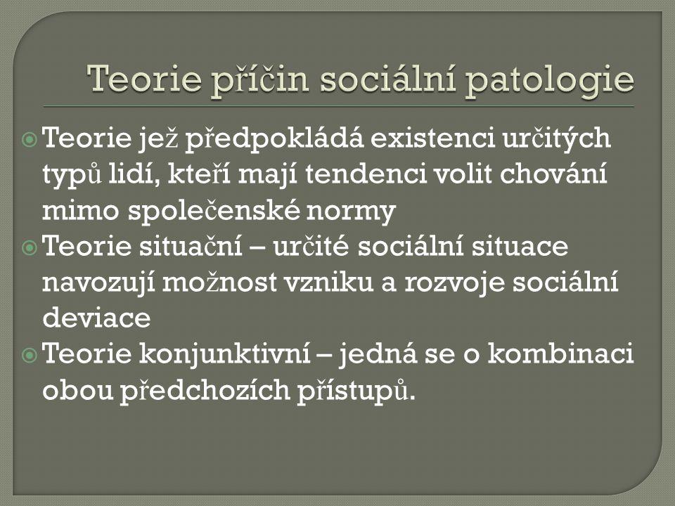 Teorie příčin sociální patologie