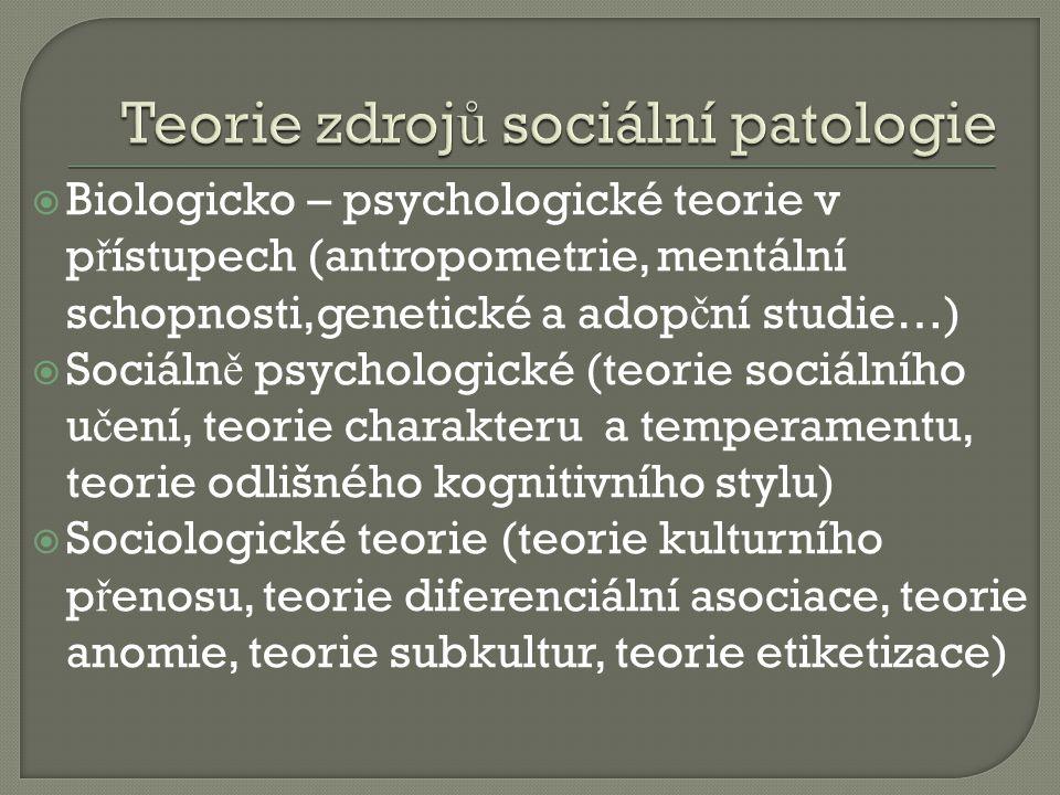 Teorie zdrojů sociální patologie
