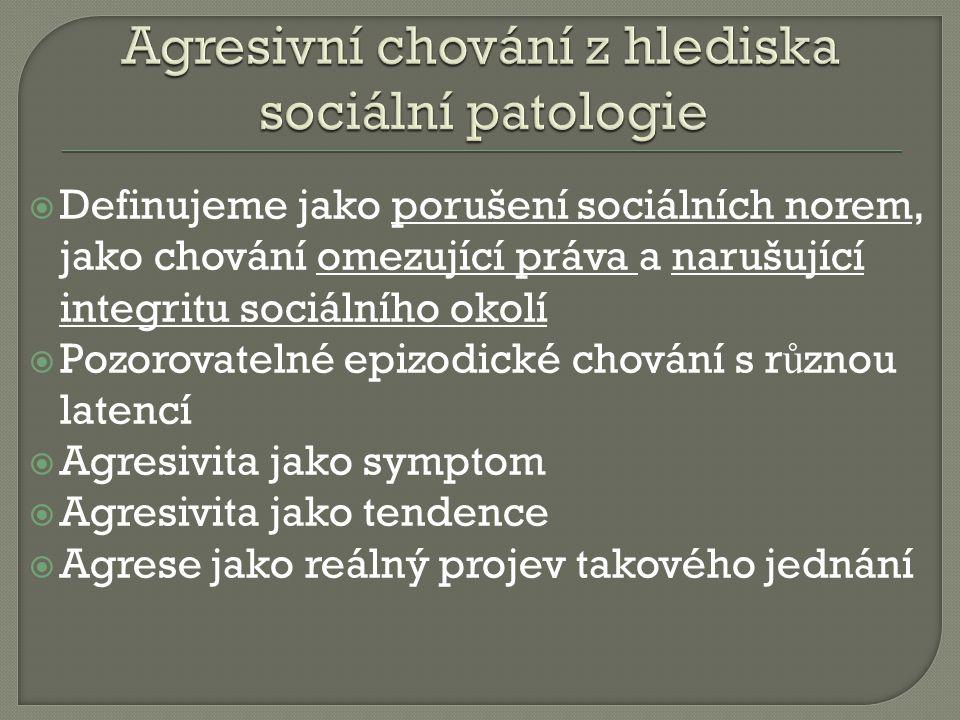 Agresivní chování z hlediska sociální patologie