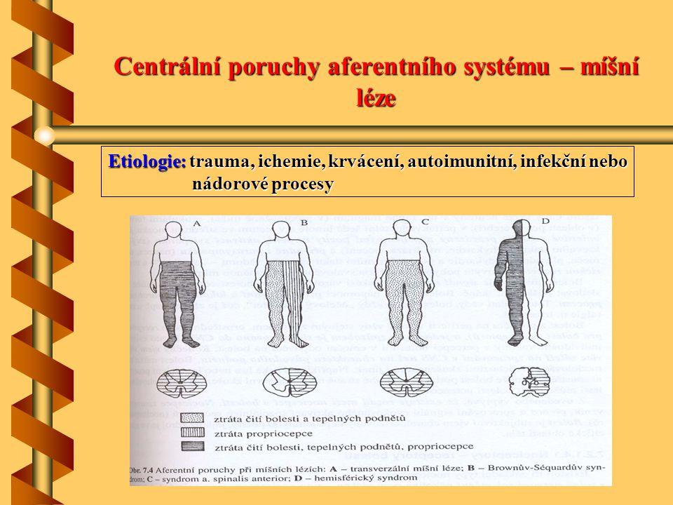Centrální poruchy aferentního systému – míšní léze