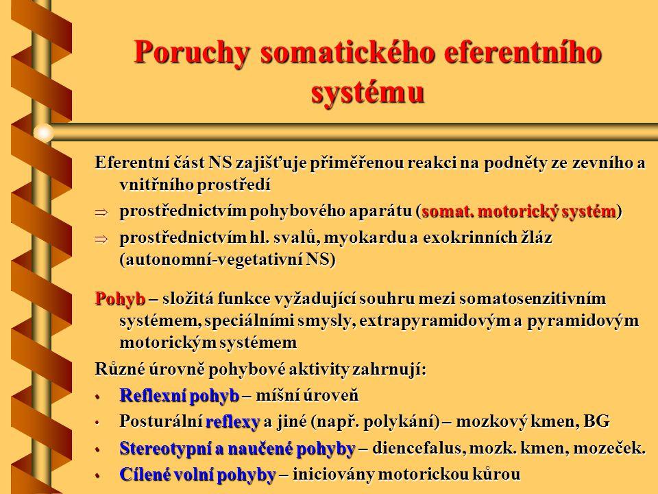 Poruchy somatického eferentního systému