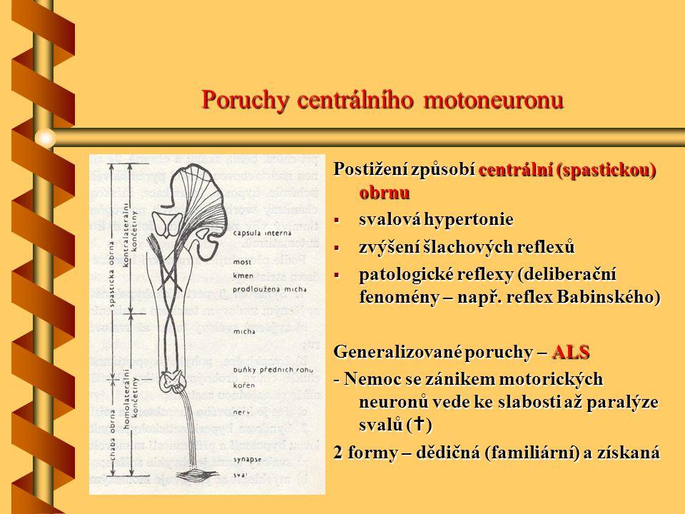 Poruchy centrálního motoneuronu