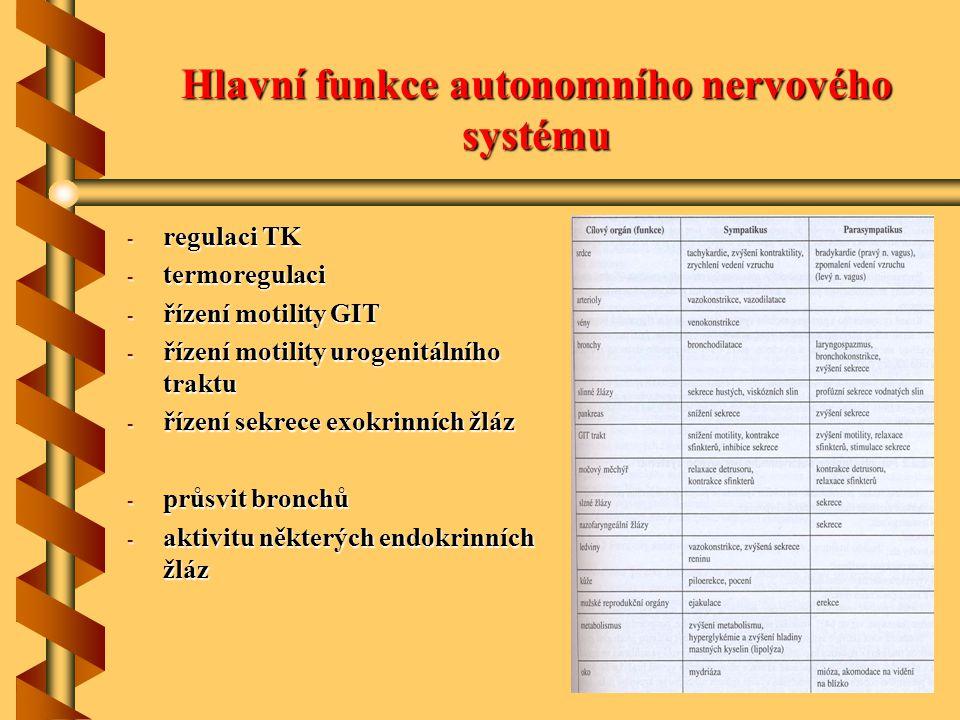 Hlavní funkce autonomního nervového systému