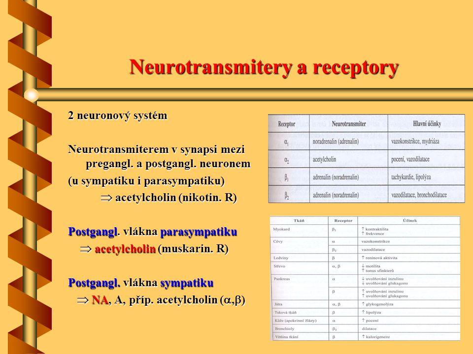 Neurotransmitery a receptory