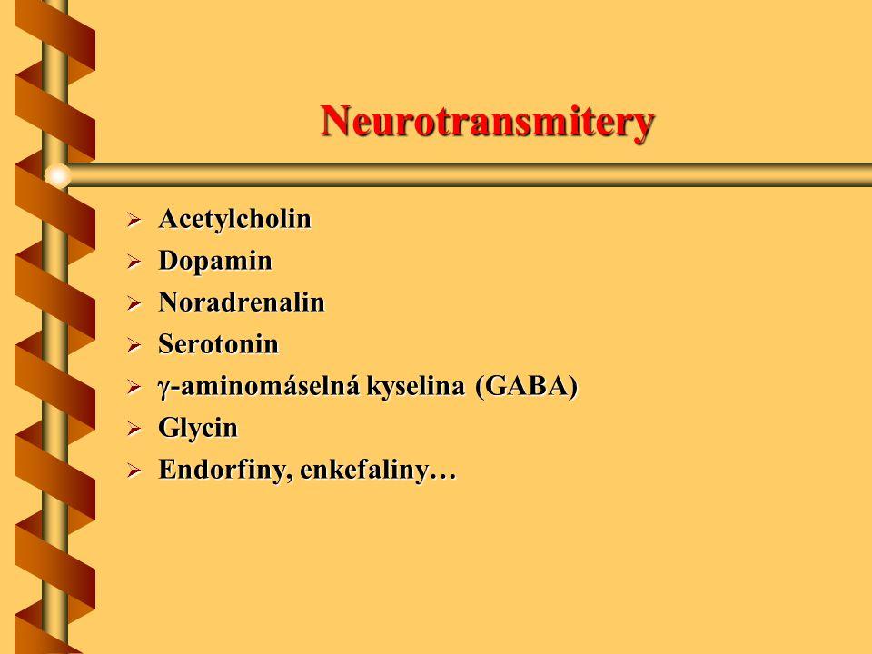 Neurotransmitery Acetylcholin Dopamin Noradrenalin Serotonin