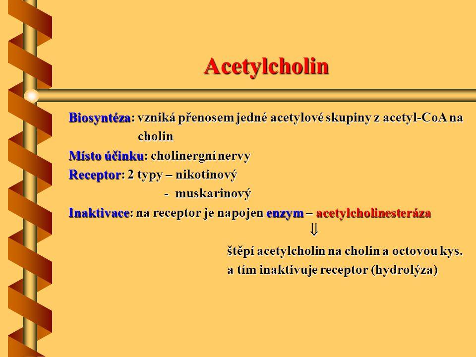 Acetylcholin Biosyntéza: vzniká přenosem jedné acetylové skupiny z acetyl-CoA na. cholin. Místo účinku: cholinergní nervy.