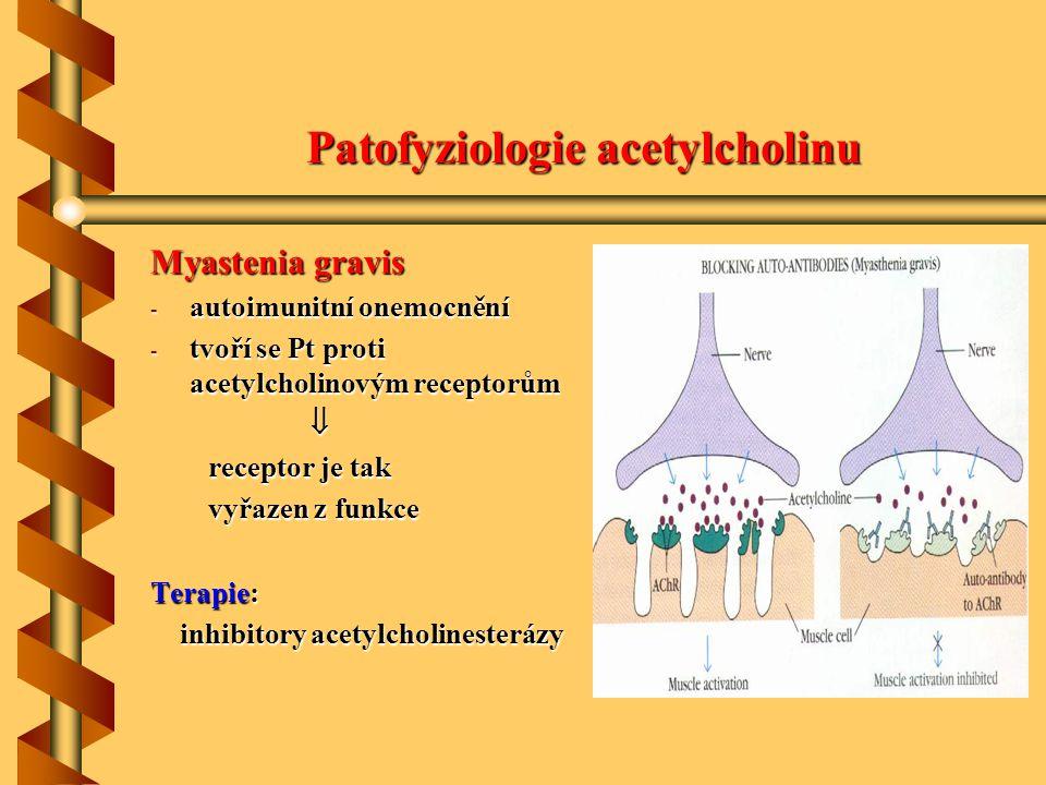 Patofyziologie acetylcholinu