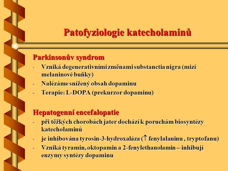 Patofyziologie katecholaminů