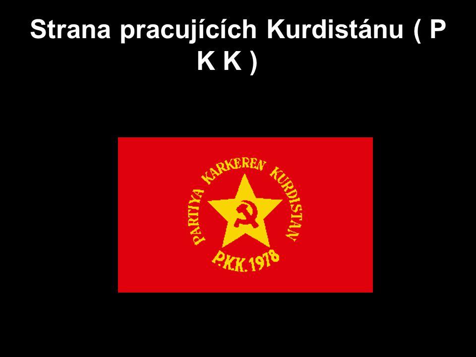 Strana pracujících Kurdistánu ( P K K )