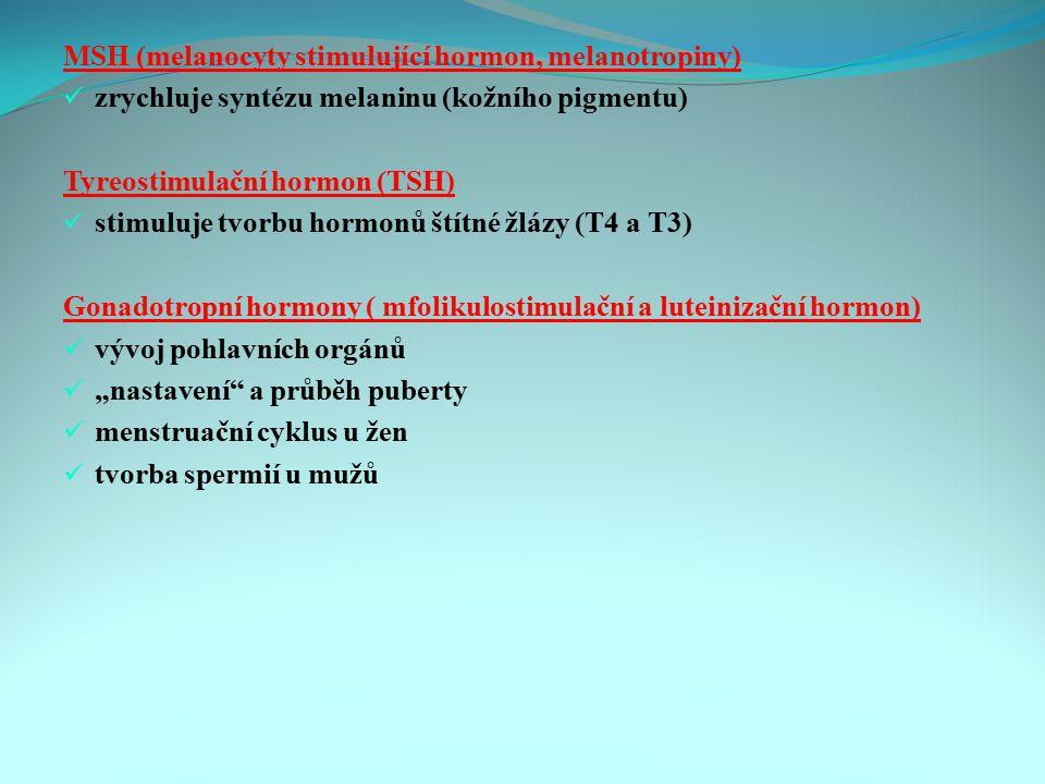MSH (melanocyty stimulující hormon, melanotropiny)