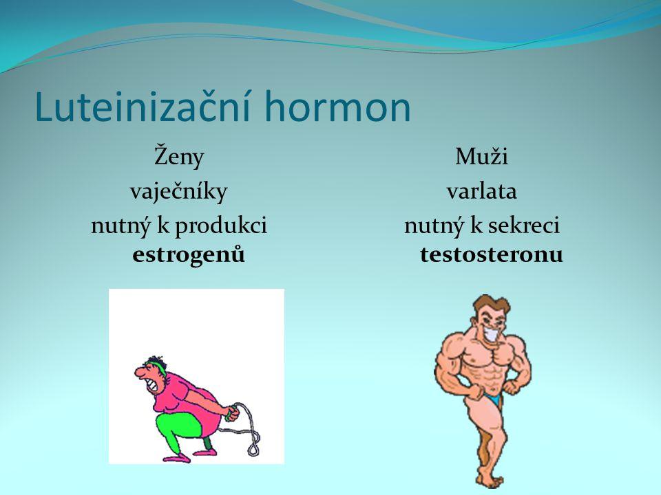 Luteinizační hormon Ženy vaječníky nutný k produkci estrogenů