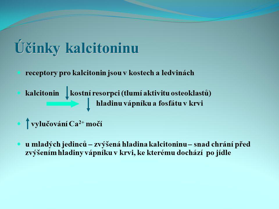 Účinky kalcitoninu receptory pro kalcitonin jsou v kostech a ledvinách