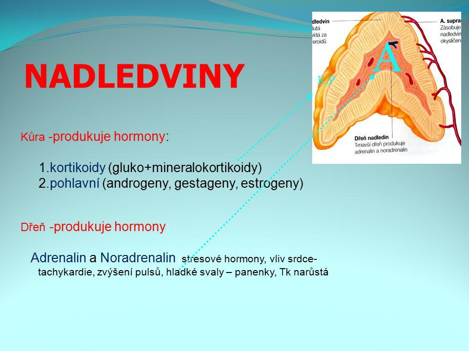 A NADLEDVINY 1.kortikoidy (gluko+mineralokortikoidy)