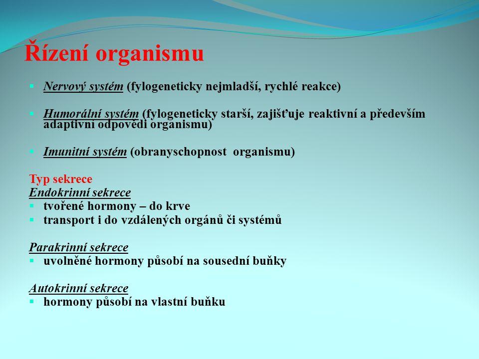 Řízení organismu Nervový systém (fylogeneticky nejmladší, rychlé reakce)