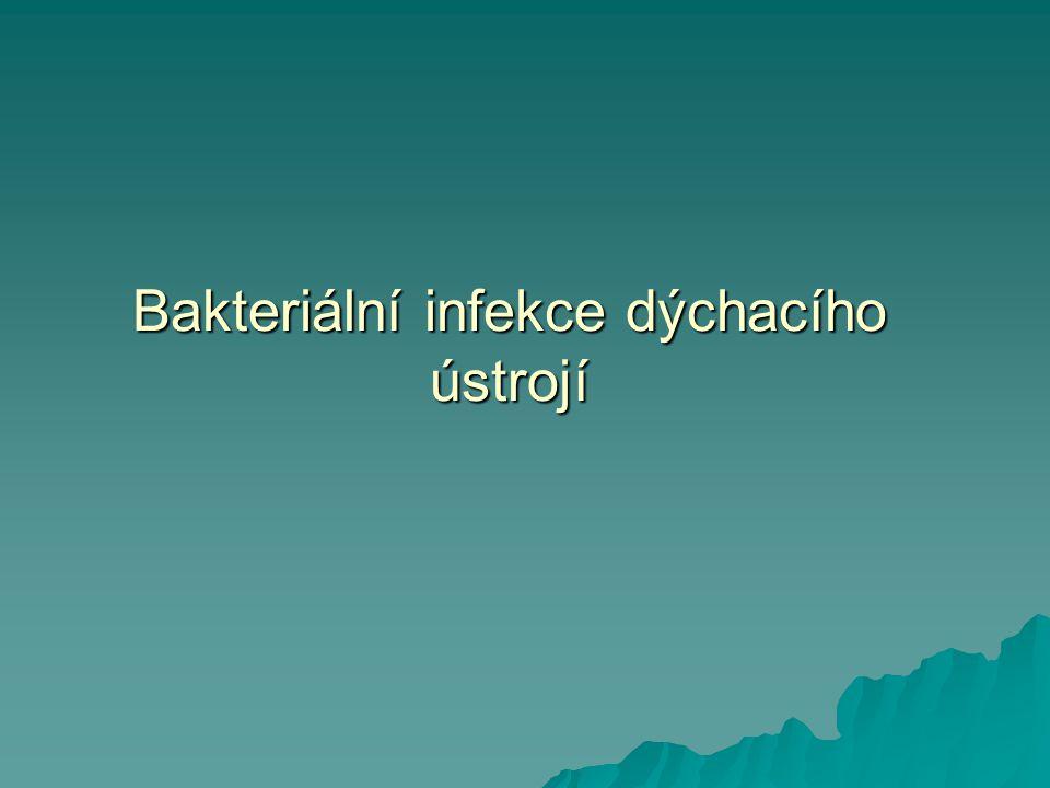 Bakteriální infekce dýchacího ústrojí