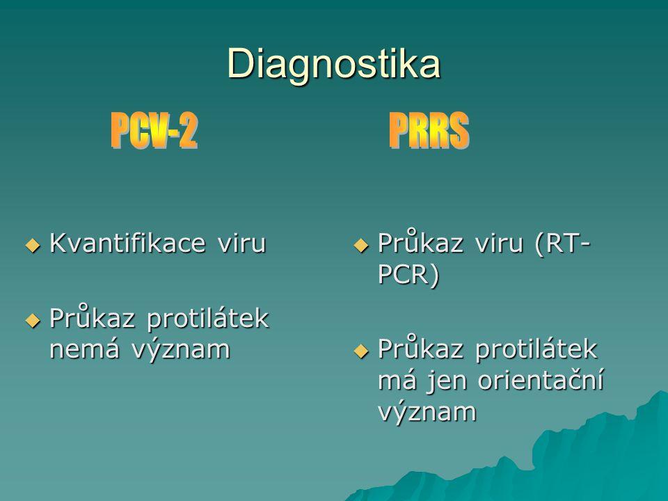 Diagnostika PCV-2 PRRS Kvantifikace viru Průkaz protilátek nemá význam