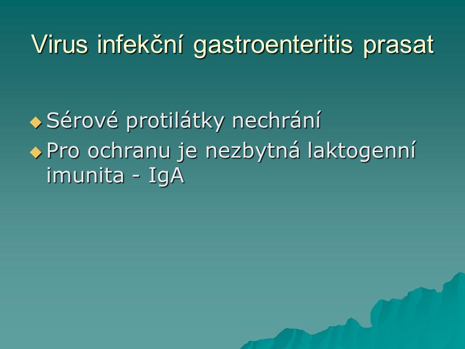 Virus infekční gastroenteritis prasat