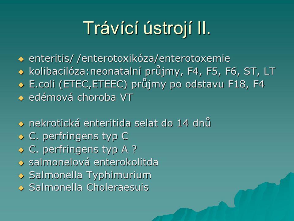Trávící ústrojí II. enteritis/ /enterotoxikóza/enterotoxemie