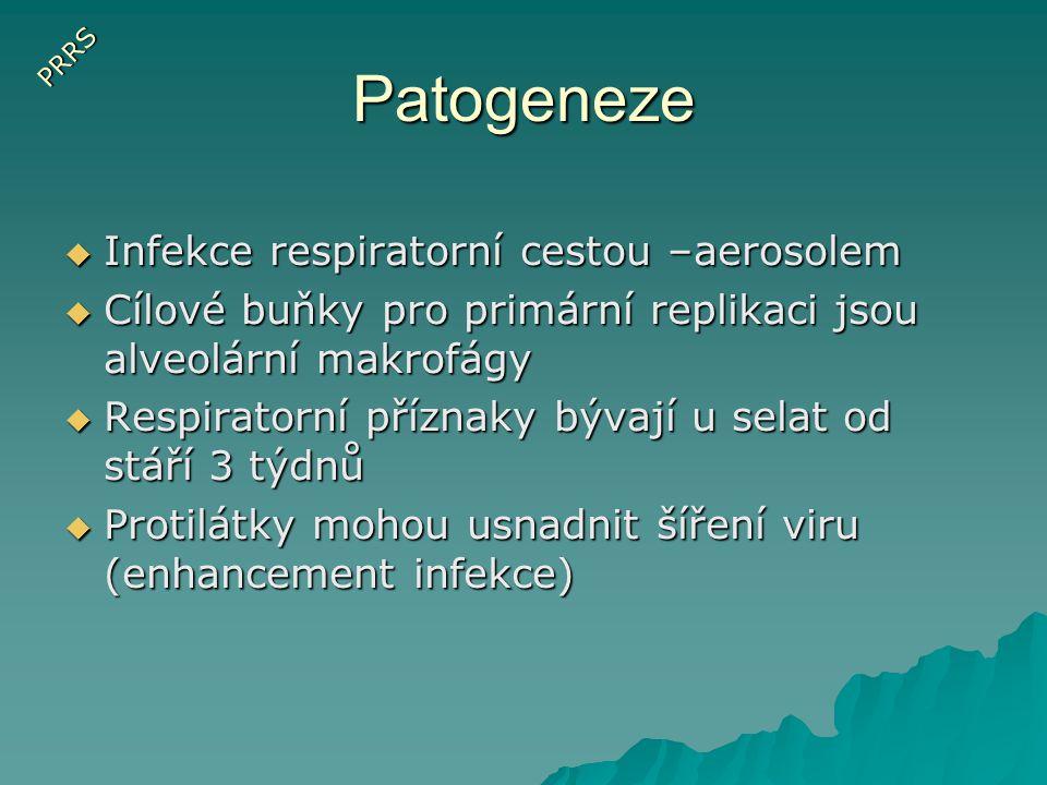 Patogeneze Infekce respiratorní cestou –aerosolem