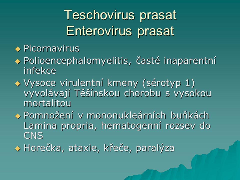 Teschovirus prasat Enterovirus prasat