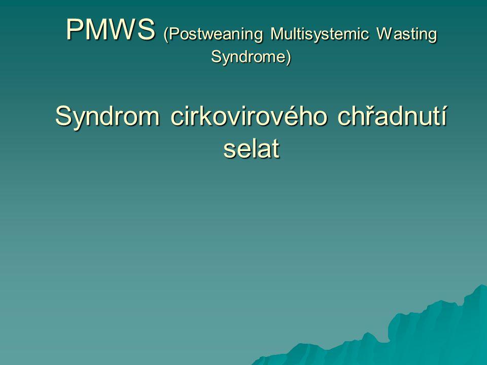 PMWS (Postweaning Multisystemic Wasting Syndrome) Syndrom cirkovirového chřadnutí selat