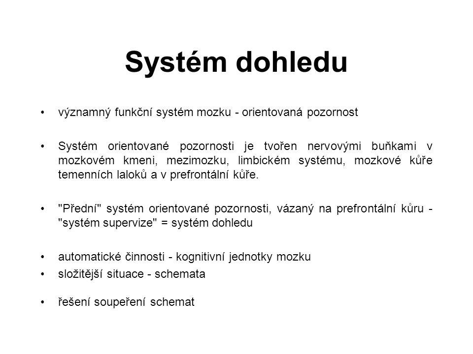 Systém dohledu významný funkční systém mozku - orientovaná pozornost