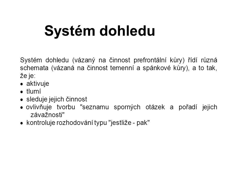 Systém dohledu Systém dohledu (vázaný na činnost prefrontální kůry) řídí různá schemata (vázaná na činnost temenní a spánkové kůry), a to tak, že je: