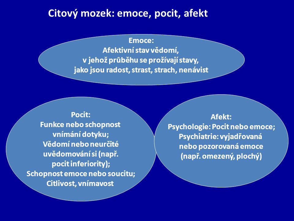 Citový mozek: emoce, pocit, afekt
