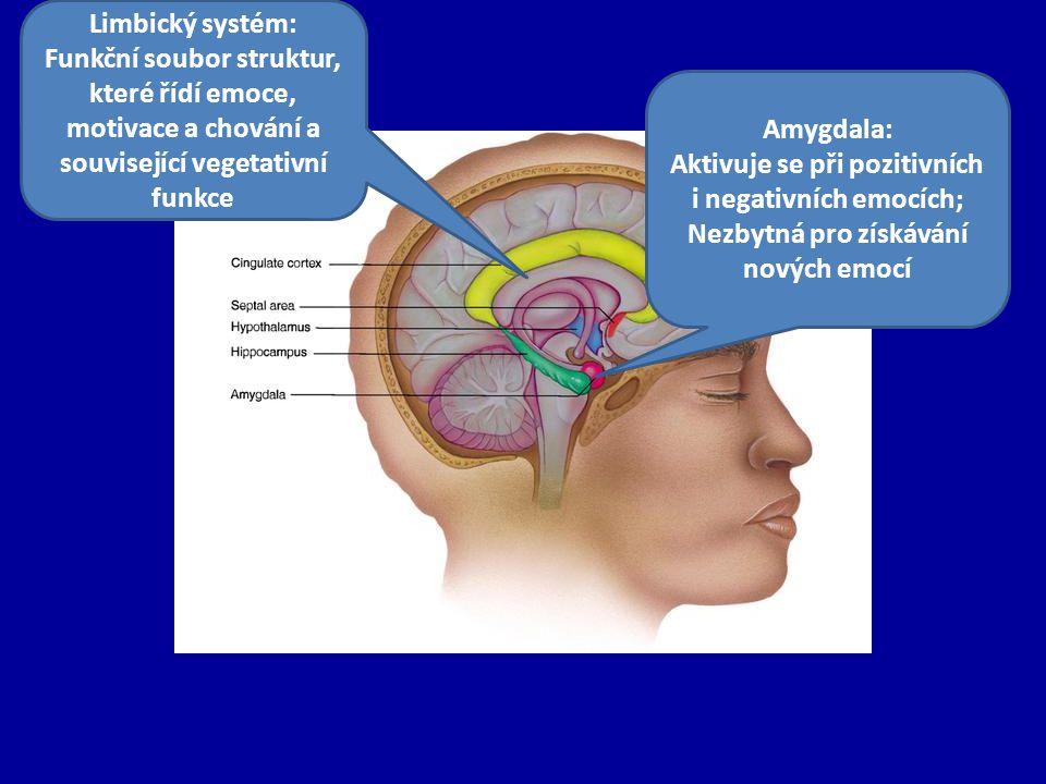 Aktivuje se při pozitivních i negativních emocích;