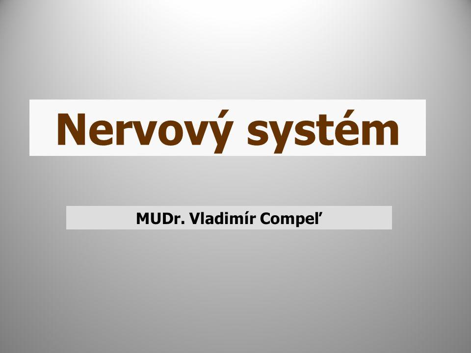 Nervový systém MUDr. Vladimír Compeľ
