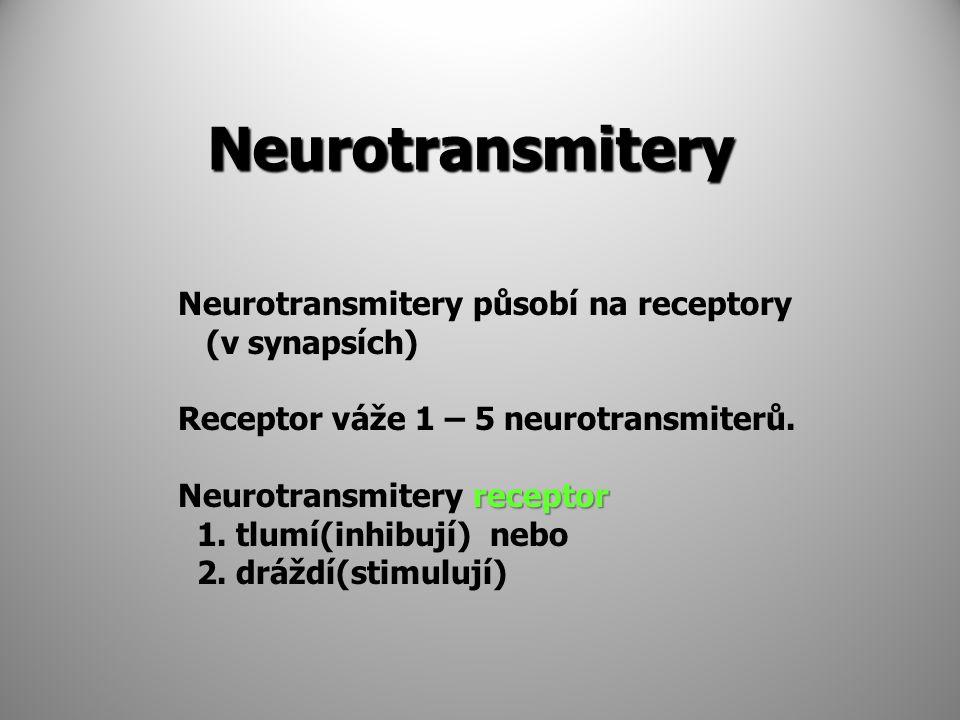 Neurotransmitery Neurotransmitery působí na receptory (v synapsích)