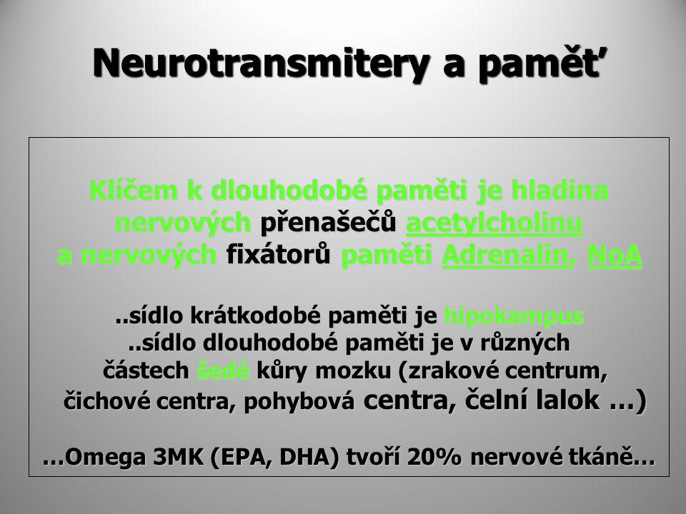 Neurotransmitery a paměť