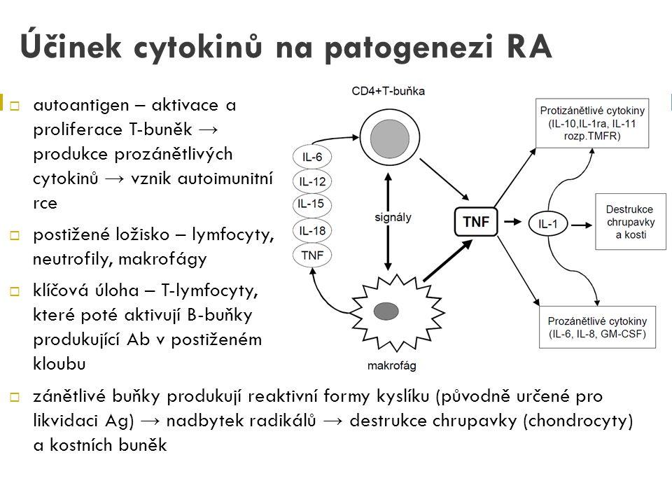 Účinek cytokinů na patogenezi RA