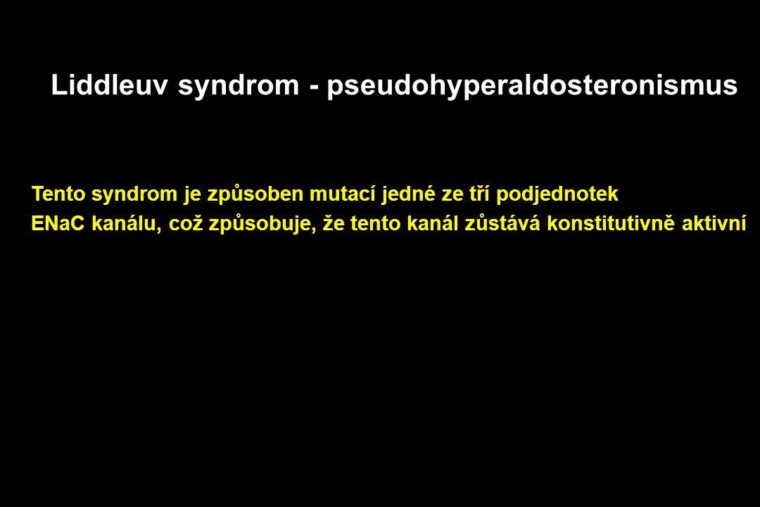 Liddleuv syndrom - pseudohyperaldosteronismus