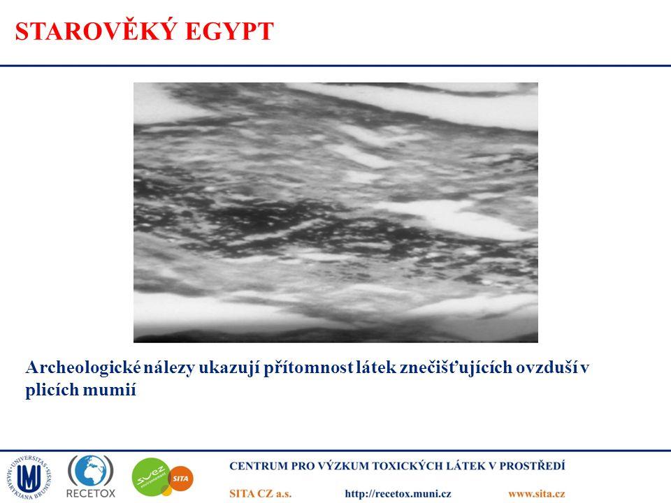 STAROVĚKÝ EGYPT Archeologické nálezy ukazují přítomnost látek znečišťujících ovzduší v plicích mumií.