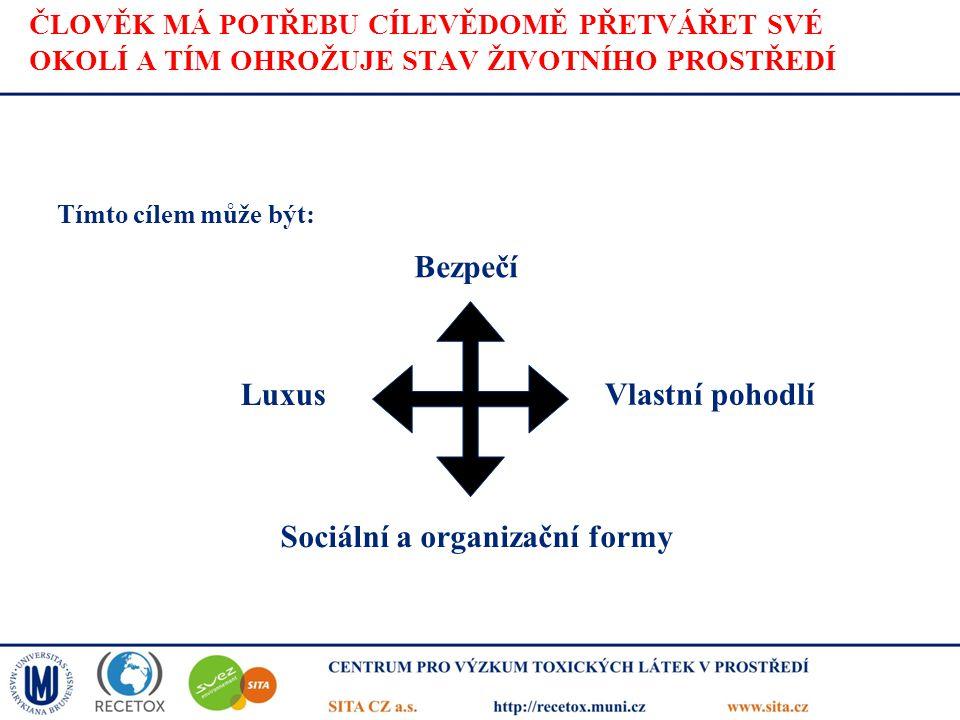 Sociální a organizační formy