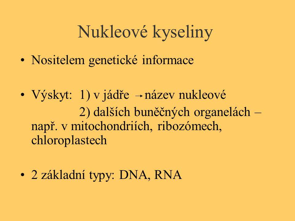 Nukleové kyseliny Nositelem genetické informace