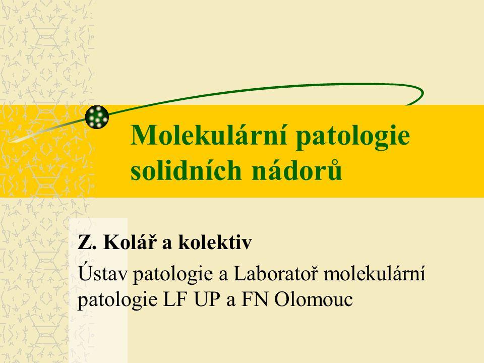 Molekulární patologie solidních nádorů