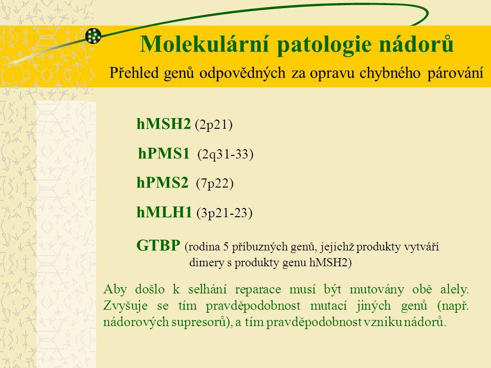 Molekulární patologie nádorů Přehled genů odpovědných za opravu chybného párování