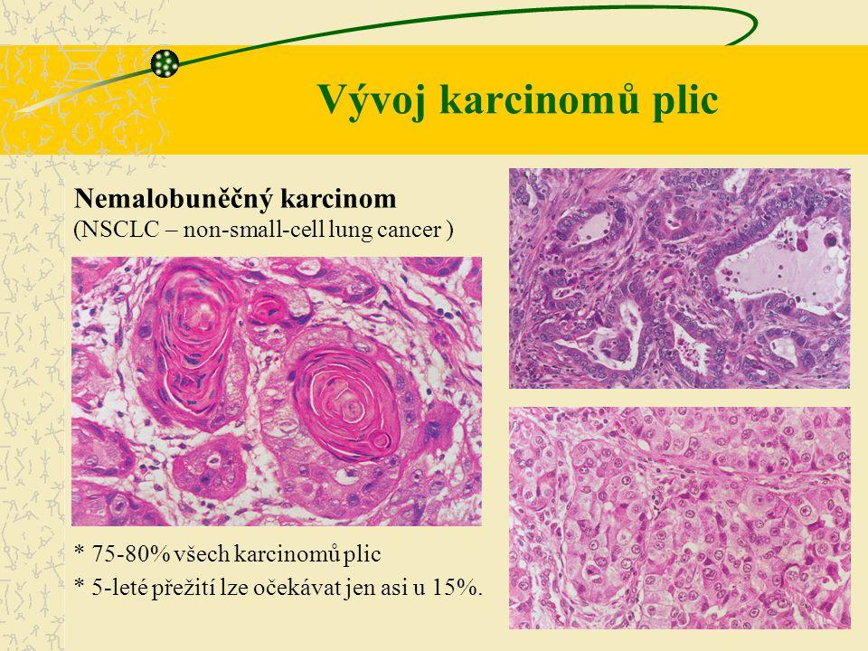 Vývoj karcinomů plic Nemalobuněčný karcinom (NSCLC – non-small-cell lung cancer ) * 75-80% všech karcinomů plic.