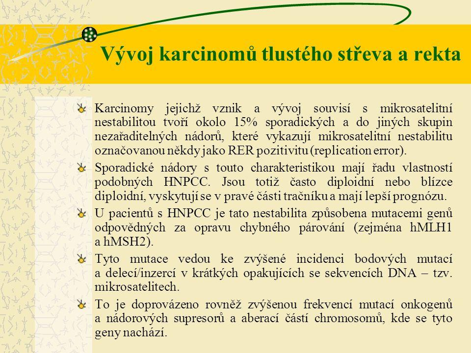 Vývoj karcinomů tlustého střeva a rekta